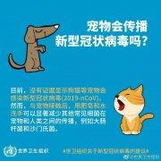 宠物会传播新型冠状病毒吗?